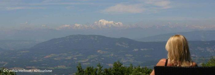vue sur les Alpes - Auberge le Catray