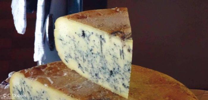 Bleu de Gex Haut Jura