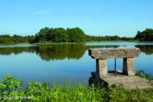 Thou et étang en Dombes