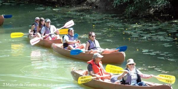 Sortie crépusculaire en kayak sur les traces des castors et des oiseaux