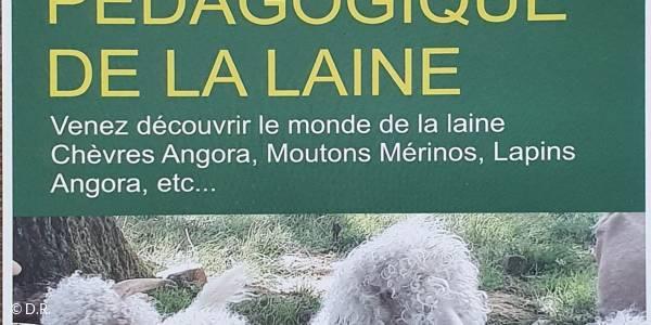 Visite guidée à la ferme pédagogique La Legend du Mohair