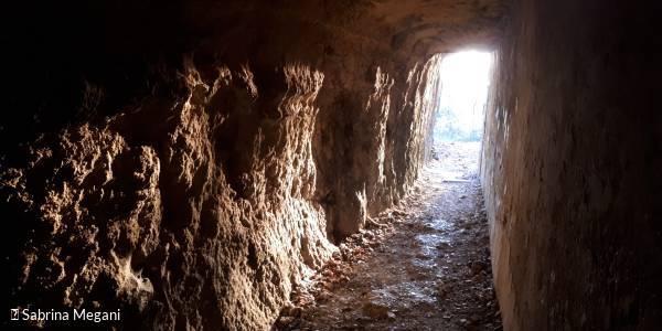 Visite audio guidée : les dessous de Briord, voyage à l'époque gallo-romaine